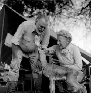 Hemingway parę lat po swoim wojennym wyczynie... We francuskich lasach nie zabawiał się z Bambi.