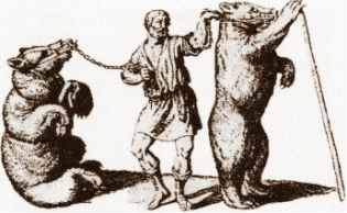 Tresura niedźwiedzi