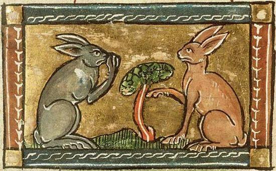 Czy mięso kota smakuje podobnie do króliczego? Tak twierdził żyjący w XVI wieku Konrad Gesner.