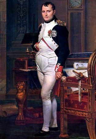 Cesarz Francuzów zdecydowanie nie doceniał Bernadotte'a. Jak się okazało zupełnie niesłusznie.
