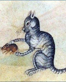 Średniowieczny kot jednego dni łapał myszy, a następnego był już modną czapką.