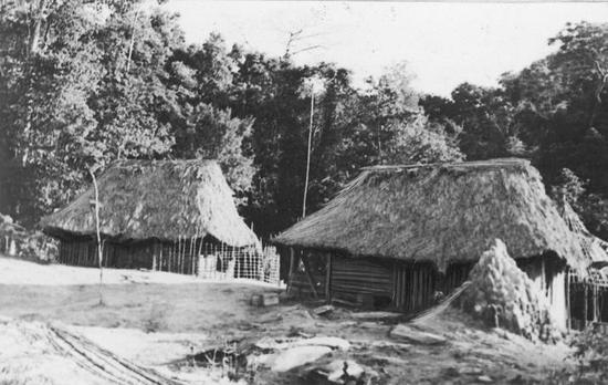 Pierwsze domki polskich plantatorów w liberyjskiej dżungli. W takich warunkach żyli nasi kolonizatorzy Czarnego Lądu.
