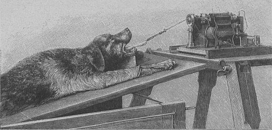 """Przyrząd do przywracania życia w trakcie działania (O sztucznem przywracaniu do życia, """"Tygodnik Illustrowany"""", 1900, nr 38)."""