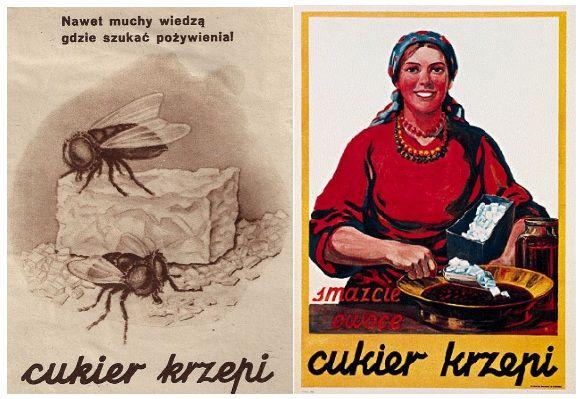 Z racji wysokich cen cukru trzeba było prowadzić szeroką akcję reklamową. Zawdzięczamy jej najsłynniejsze polskie hasło reklamowe międzywojnia, a może i całego stulecia. Wszyscy przecież wiemy, że cukier krzepi.