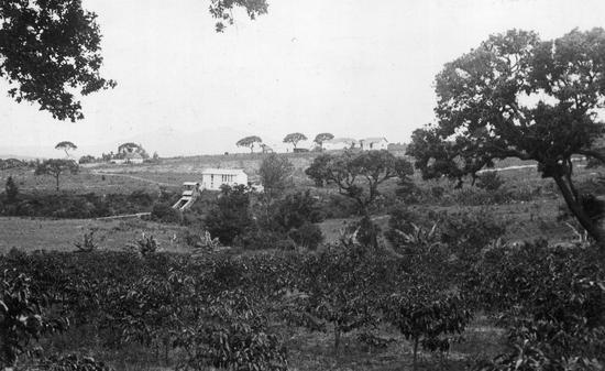 Polskie gospodarstwo, plantacja kawy, młyn i zabudowania mieszkalne w Boa Serra w Angoli. Zdjęcie wykonane przez Kazimierza Nowaka w trakcie jego podróży przez Afrykę.