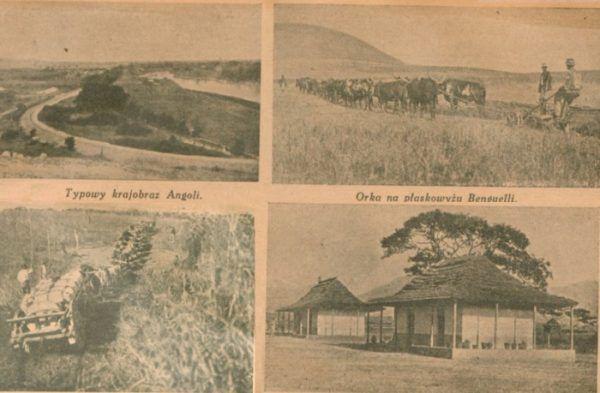"""Zbiór fotografii Angoli z miesięcznika """"Morze"""": krajobrazy, praca na roli, transport i domy kolonistów."""