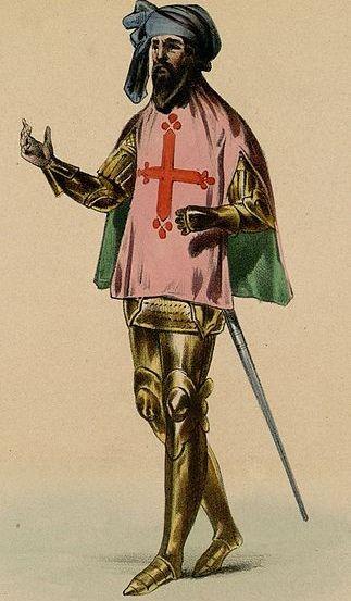 Hrabia Tuluzy Rajmund VII chciał bronić niezależności swoich ziem, a przy okazji życia tysięcy katarów na nich żyjących. Niestety przegrał wojnę, a do wyniszczonych długotrwałymi wojnami przeciw albigensom ziem południa Francji dołączyły i jego włości.