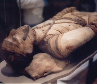 Mumia. W wersko sproszkowanej panaceum na wszystko.