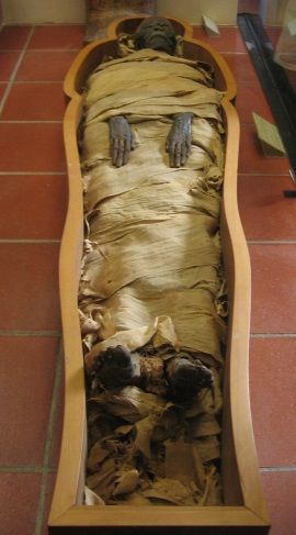 Mumia. (autor zdjęcia Joshua Sherurcij)