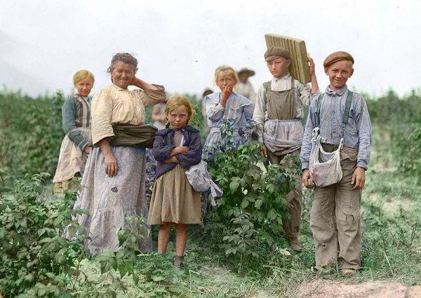 Wielu mieszkańców Galicji zamiast ciągłego głodu i biedy wybierało ucieczkę za ocean. Na zdjęciu Polska rodzina pracująca na farmie w okolicy Baltimore.
