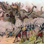 Słonie bojowe w akcji
